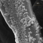 Micro-encapsulation